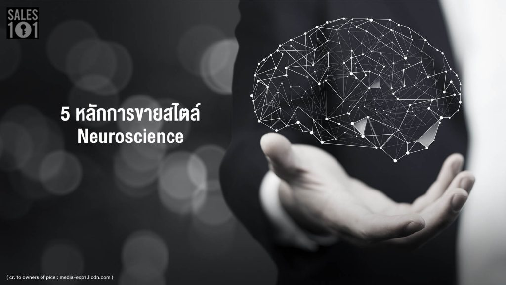 5-principles-of-selling-neuroscience-style